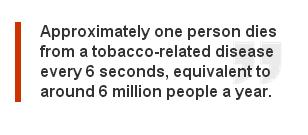 UNWTO quote on smoking