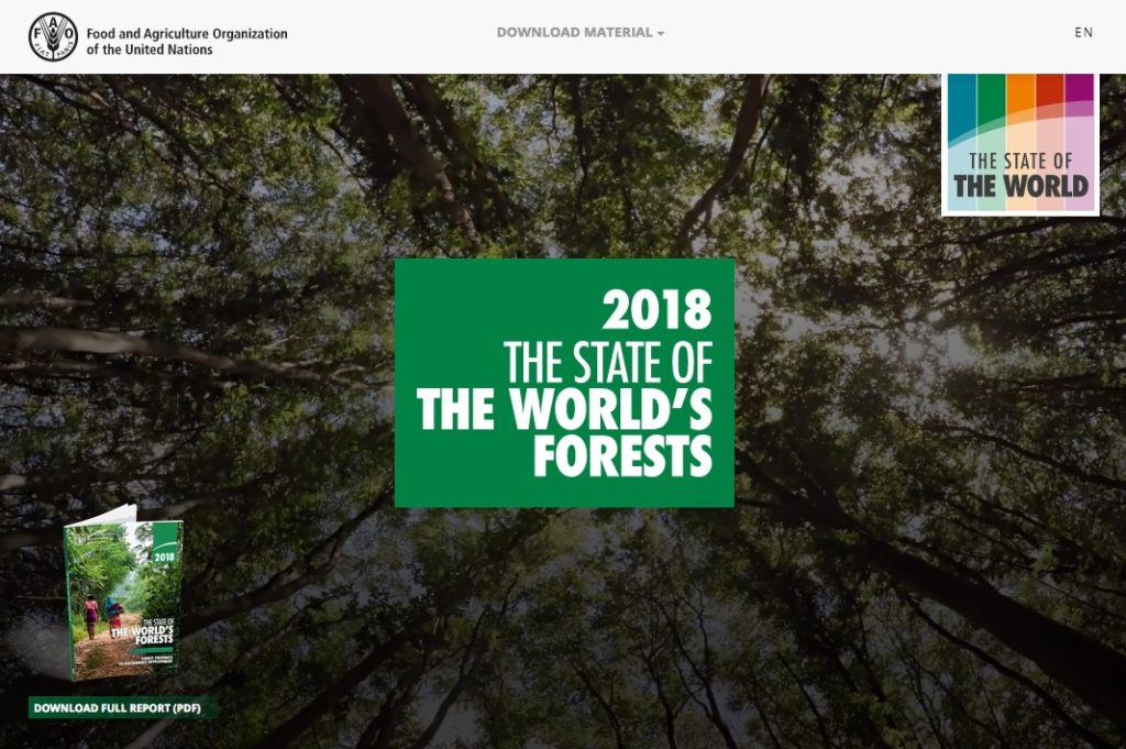 Forests 'essential' for the future, UN agriculture chief spells out